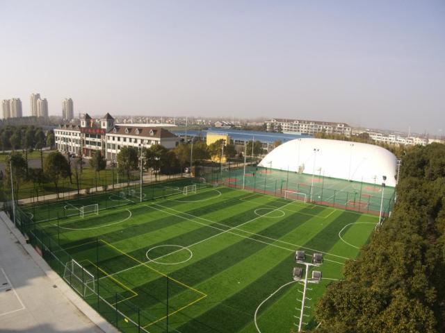 足球场照明中的光带布置,光带布置将是足球场高清转播未来
