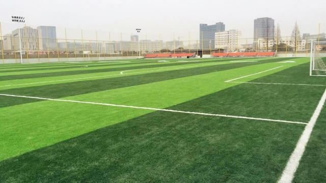 <b>足球场照明中的光带布置,光带布置将是足球场高清转播未来</b>
